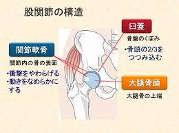 引用:大阪中央病院